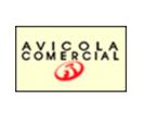 Avicola Comercial