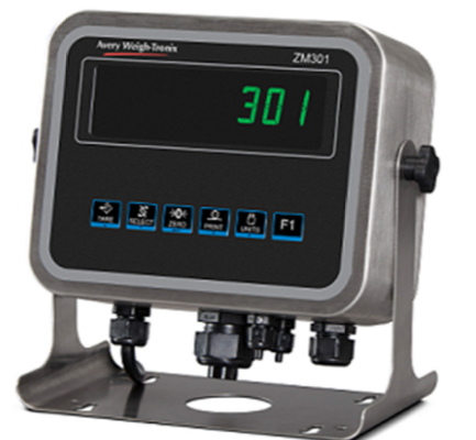 Weigh tronix 301